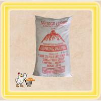 tepung sagu cap gunung agung/tapioka/karung/bal 25 kg