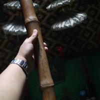 Bambu Buta Original