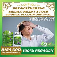 Obat Pelupa / Anti Pikun / Alzheimer & Demensia , Delirium / Linglung