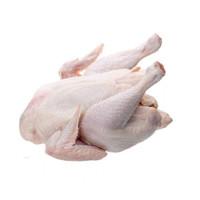 Ayam Negeri Utuh Segar (bisa request potong) ~ 1Kg [GROSIR]