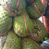 buah sirsak segar fresh 1kg