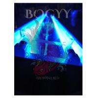 (Ready stock ) LAMPU TANNING AQUAZONIC T5 ACTINIC BLUE 120 CM 2 LAMPU