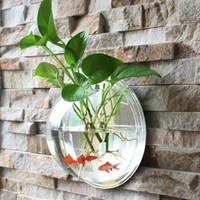 Beyond Hanging Aquarium / Aquarium Gantung Hiasan Dinding