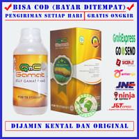 Jely Gamat | Jelly Gamat Jeli Gamat | jelli Gamat Gold Asli Original - QnC 300ML