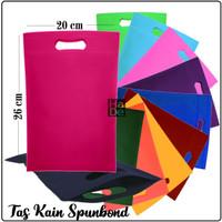 Oval 20x26 cm   Tas Kain Spunbond / Goodie Bag Polos Kantong Souvenir - Bahan Tipis, Random
