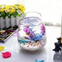 Aquarium Solter Cupang Mini Kaca Minimalis Premium Good Quality