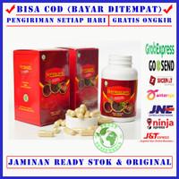 Sarmucare Sarang Semut Asli Papua - Obat Gula Darah Tinggi / Diabetes - 100 Kapsul