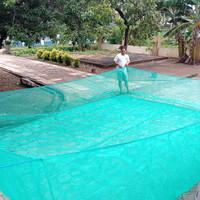 jaring keramba ikan bahan kasa hijau