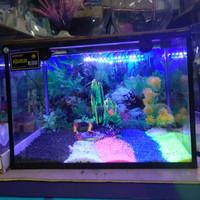 Paket Aquarium Lengkap Triset L