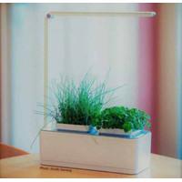 hydroponik set hydroponic set mini garden with Led