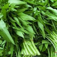 Sayuran Kangkung Hijau Fresh 1 Ikat
