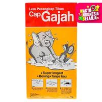 Lem Cap Gajah Papan 70gr | Perangkap Pembunuh Pengusir Penangkap Tikus