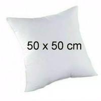 Jual bantal sofa uk 50 x 50