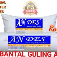 PAKET 1 Bantal 1 Guling Andes full silikon