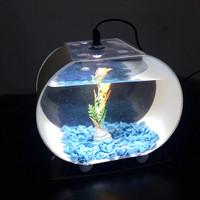 aquarium mini ikan cupang akrilik unik kuat murah promo bergaransi