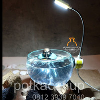 Lampu LED akuarium cupang kecil dan aquascape mini