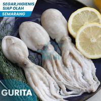 Baby Gurita Fresh 500gr