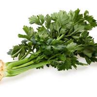 Daun Seledri / 250 gram [GOJEK/GRAB INSTANT/SAMEDAY ONLY]