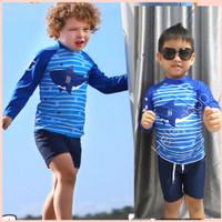 Baju renang anak laki laki 2thn-8thn import setelan