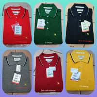 Kaos Polo Pria Arnold Palmer banyak pilihan warna