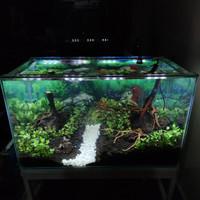 SOLD Aquarium Full Set Aquascape 60E