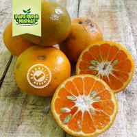 buah jeruk medan brastaginuah segar murah Premium manis banyak