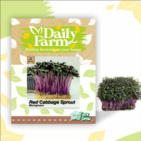 Daily Farm - Benih Red Cabbage Sprout - Microgreens Seed - Import