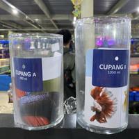 aquarium akuarium soliter tabung cupang DLX Cupang B betta fish