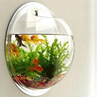 aquarium dinding bulat diameter 20cm
