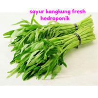 sayur kangkung hidroponik fresh 1 ikat