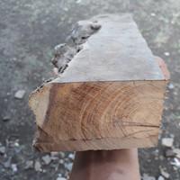 bahan kayu galih kelor kuning serat emas