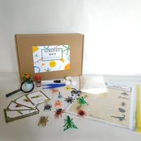 Bugs Animal Box (SET) Mainan Edukasi Sensorial Kit Montessori Inspired