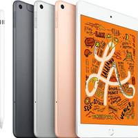 Apple iPad Mini 5 2019 7.9 inch 64 GB Wifi Only