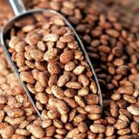 Pinto Bean / Kacang merah / pinto Beans / Kacang Pinto 100Gram