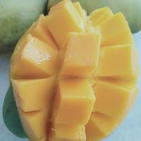 Mangga Harum Manis 1kg buah/ Mangga sejenis harum manis