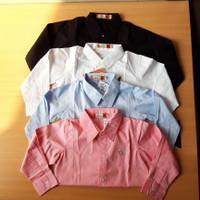 Kemeja anak laki laki perempuan import warna pink, biru, putih & hitam