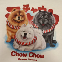 Kaos /T shirt/Baju/Kaos gambar hewan anjing Chow2 Tekel Corgi L dewasa
