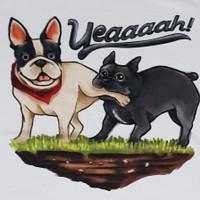 Kaos /T shirt/Baju/Kaos gambar hewan Poodle Chow2 Pitbull M dewasa