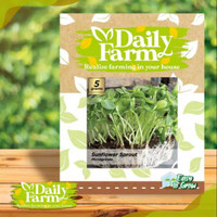 DF benih SUNFLOWER SPROUT microgreens 5 gram sun flower daily farm
