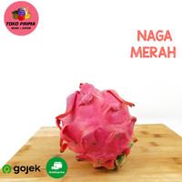 BUAH NAGA MERAH 1 Pcs - medium