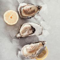 Oyster Fresh Sashimi , Sushi or Grill Promo