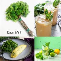 DAUN MINT SEGAR 100 gr PEPPERMINT | sayuran buah segar Busayda