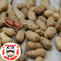 Kacang Kulit Panggang / Kacang Tanah Kulit Sangrai 500 Gram