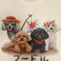 Kaos /T shirt/Baju/Kaos gambar hewan/Kaos gambar anjing POODLE ber5 L