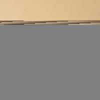 [1dus isi 40pcs] Bihun Instan merk Rose Brand rasa Ayam Bawang 55gr