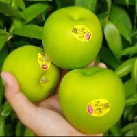 buah apel granny smith 1kg