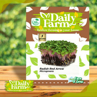 Benih Radish Red Arrow - Bibit Microgreens - Daily Farm