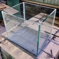 Soliter Cupang Guppy Aquarium 30x20x20 5mm