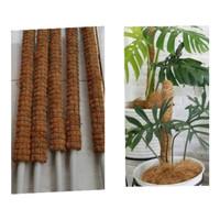 turus tiang penyangga tanaman 50 cm