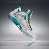 Sepatu Nike Air Jordan 34 White Blue
